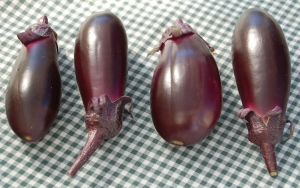 eggplants4cropsm