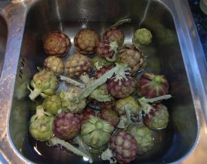 artichokes2cropsm