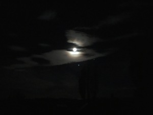 Near-full moon means bright evenings, but dark mornings.