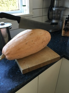 A jumbo pink banana squash--one of last year's winners.