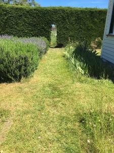 A formal path through the herb garden.
