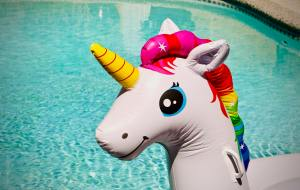 unicorn pool toy